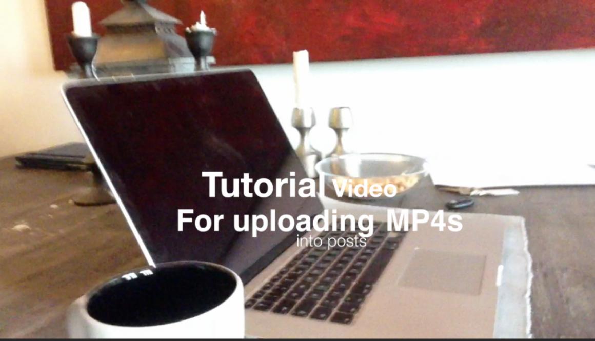Uploading videos to posts